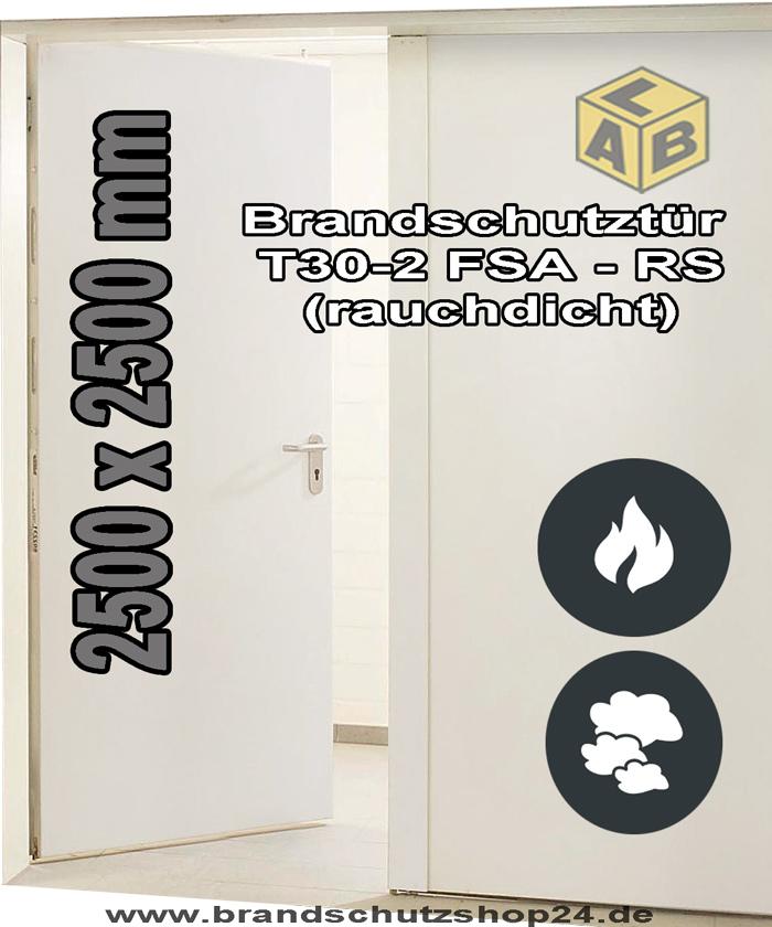 brandschutzt r stahl t 30 2 fsa rs 2500 x 2500 mm brandschutzshop24. Black Bedroom Furniture Sets. Home Design Ideas